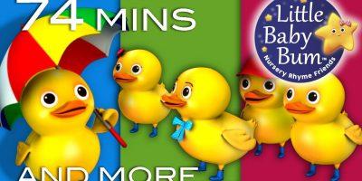 Five Little Ducks   Little Baby Bum   Nursery Rhymes for Babies   Videos for Kids