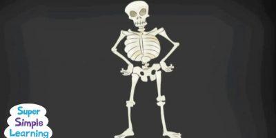 The Skeleton Dance
