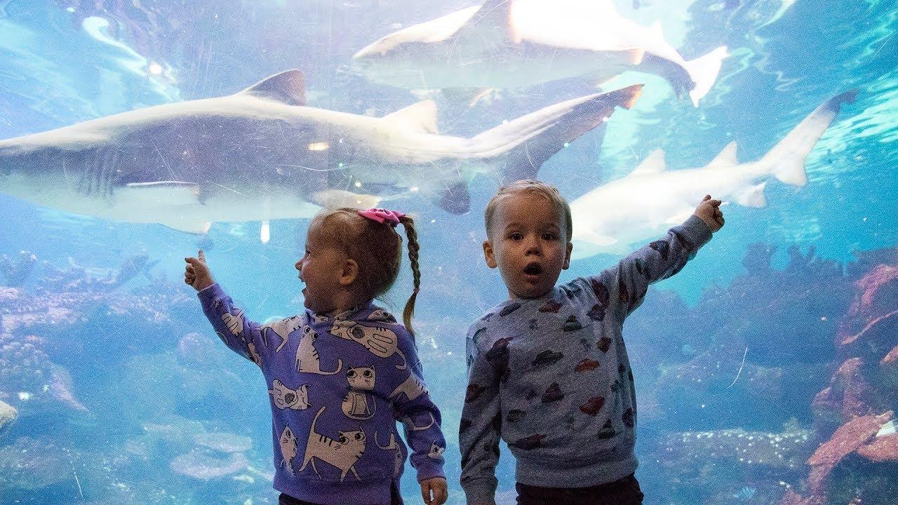 Gaby and Alex visiting Aquarium. Family Fun for kids