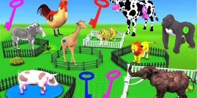 Learn Wild Animals Supermarket Shopping Cart Toys For Kids | Animals Cartoon For Kids Nursery Rhymes