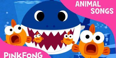Baby Shark   Animal Songs   PINKFONG Songs for Children