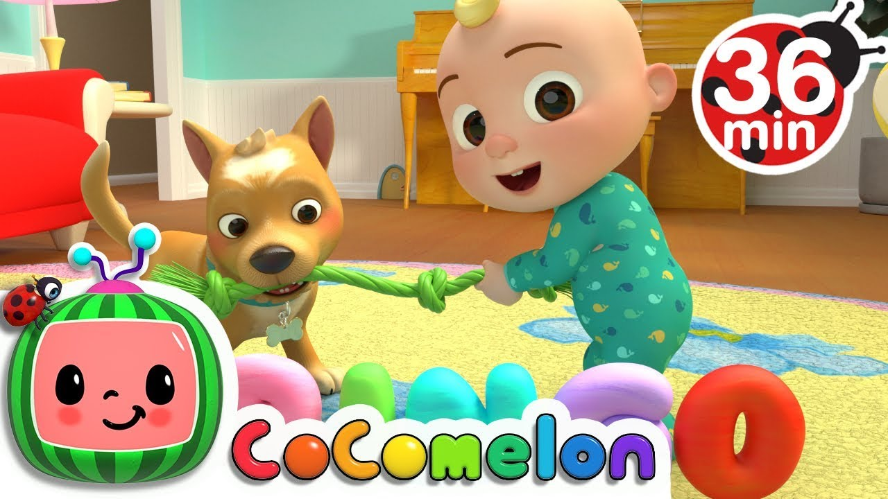 Bingo | +More Nursery Rhymes & Kids Songs – Cocomelon (ABCkidTV)