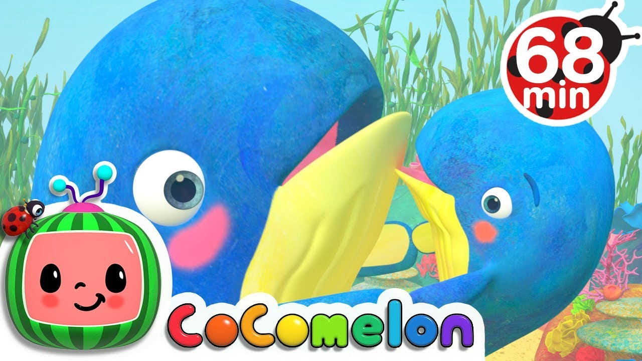 Mom and Baby Blue Whale Lullaby Song | +More Nursery Rhymes & Kids Songs – Cocomelon (ABCkidTV)