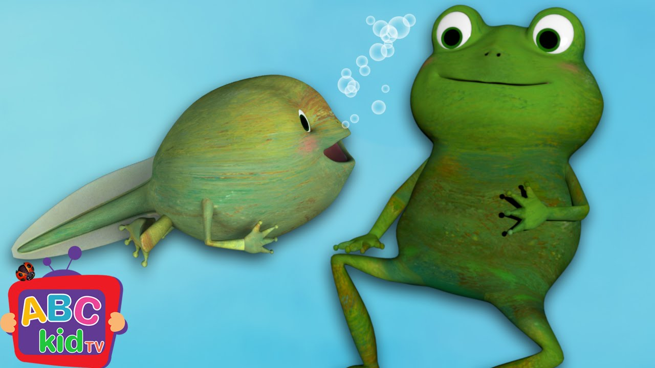 Frog Song (Life Cycle of a Frog) | Cocomelon (ABCkidTV) Nursery Rhymes & Kids Songs