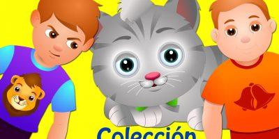 Campana Ding Dong   Canciones Infantiles Populares Colección   ChuChu TV
