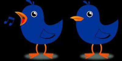 Sweety & Fluffy Bird  Twinkle Twinkle Ringtone