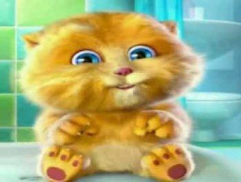 Twinkle Twinkle Little Star Sing By Cute Cat