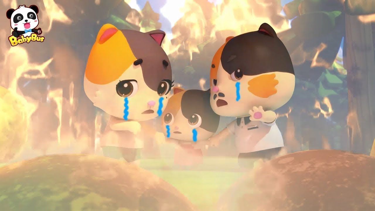 Baby Kitten's Daddy Got Injured in Forest Fire | Super Panda Rescue Team | Kids Song|BabyBus Cartoon