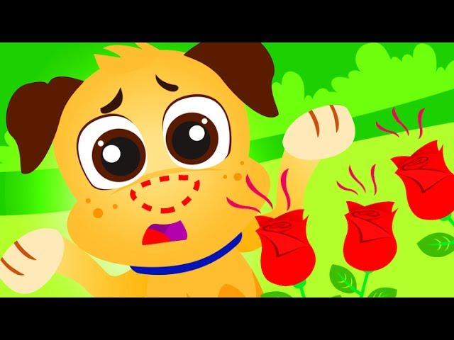 Where Is My Nose? | Kids Songs by Little Angel