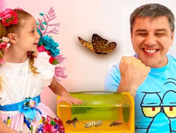 Nastya learn insects with her dad. Educational and useful video for children